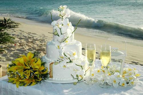 Beach Wedding Cakes Best Of Cake